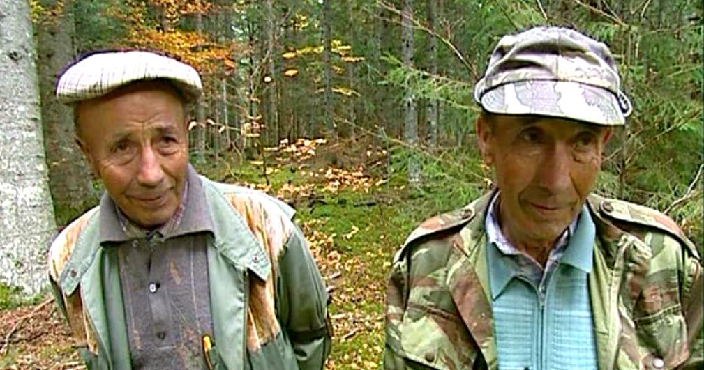 "REPORTAGE : Emission TF1 ""Les champignons"". Post production"